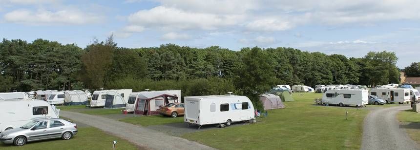 Hard and Grass Pitches in the Wooded Surrounds of Dunstan Hill Camp Site, Northumberland
