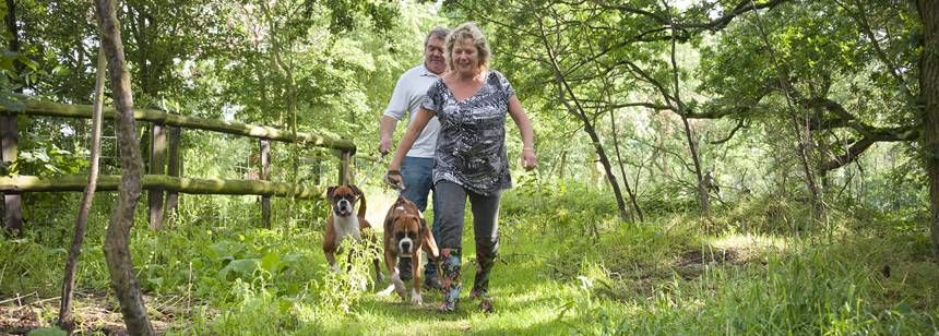 A Couple Getting Back to Nature With Their 2 Dogs Ebury Hill Camp Site, Shropshire