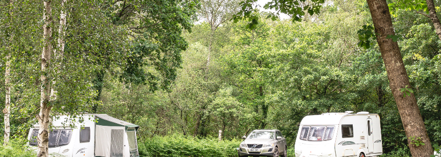 The Nature Trails Surrounding Graffham Camp Site, West Sussex