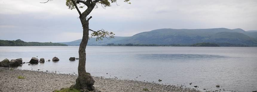 Views Over Loch Lomand at the Milarrochy Bay Camp Site, Glasgow