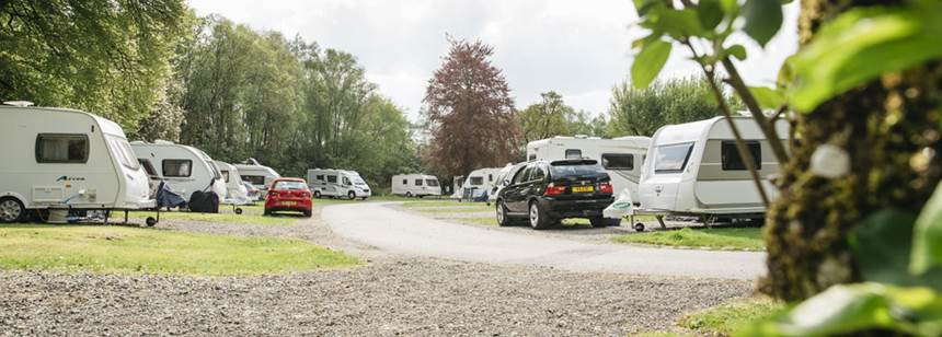 Grass Pitches Surrounded by Woodlands at the Oban Camp Site, Argyll