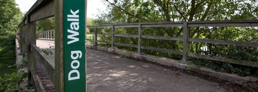 A dog Friendly Nature Trail at the Walton-On-Thames Camp Site, Surrey