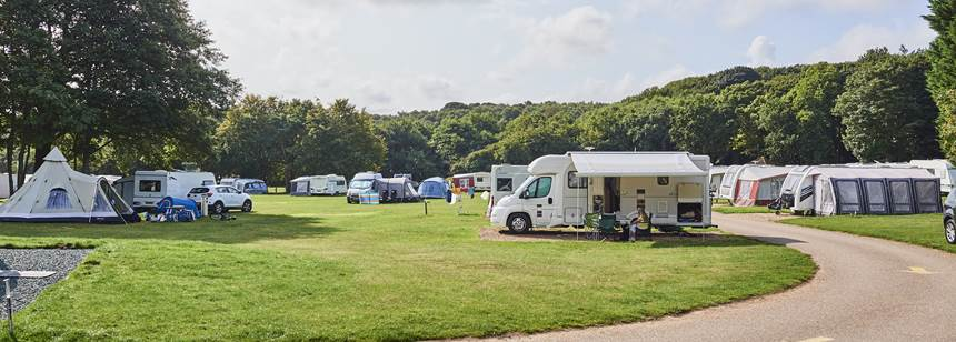 Grass Pitches Surrounded by the Woods at the West Runton Camp Site, Norfolk