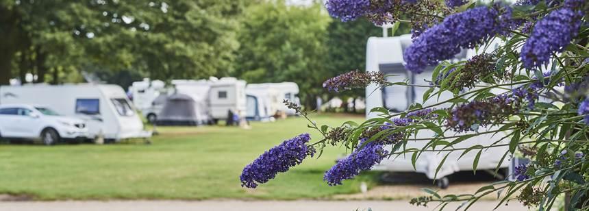 West Runton campsite