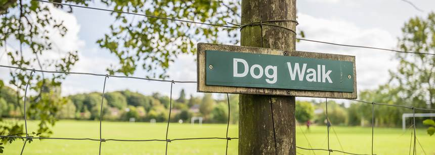 wolverley dog walk post