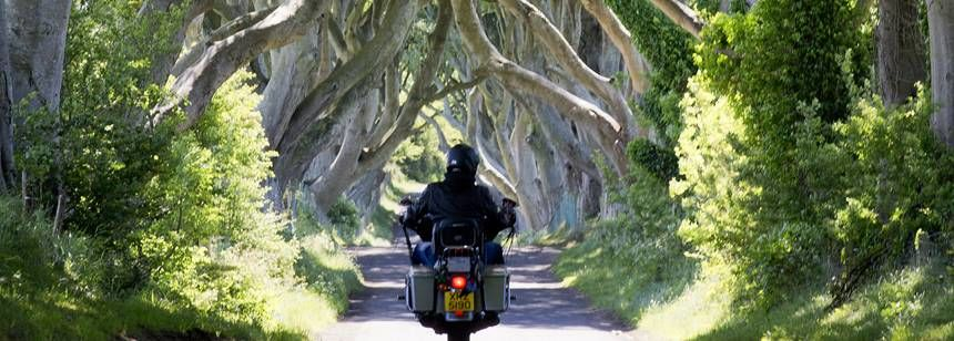 Dark Hedges. Within 1 mile