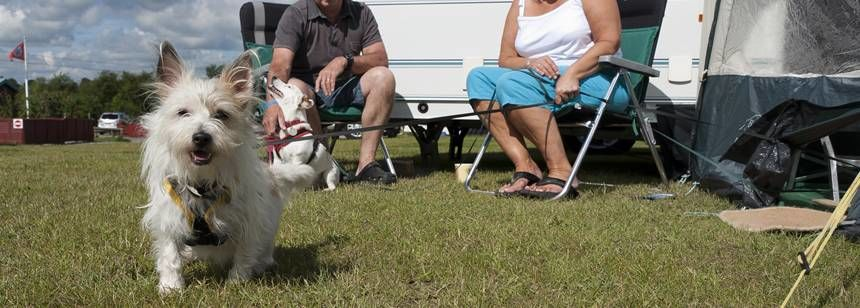Couple Relaxing in the Sun and Enjoying Spending Time Together at Conkers Camp Site, Derbyshire