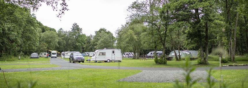 Caravans and motorhomes position on the site
