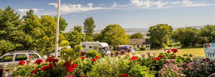 Minehead campsite in bloom