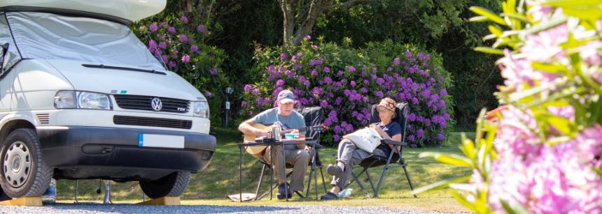 Minehead campsite in bloom