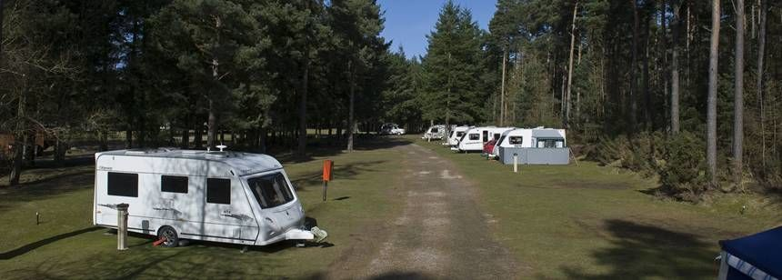 Secluded Grass Pitches Set in the Wooded Surrounds of the Nairn Camp Site, Inverness