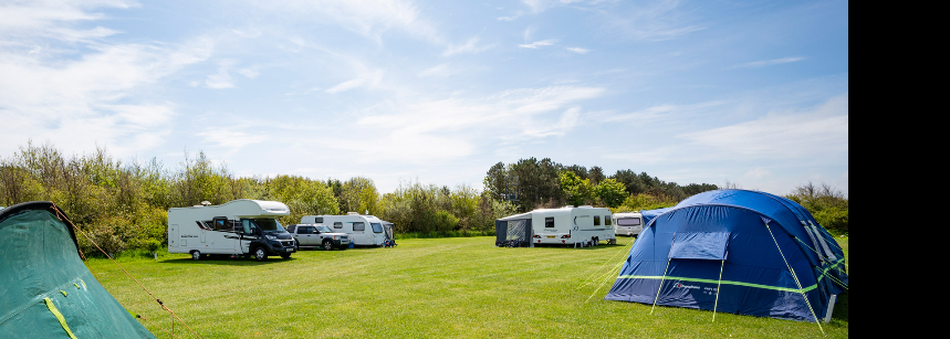 Hard Standing Pitches For Your Camper or Caravan at Beadnell Bay Camp Site, Northumberland