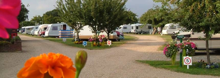 Chichester campsite