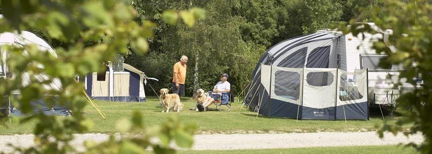 Crowborough campsite