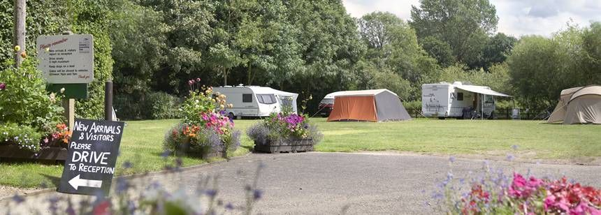 Grass Pitches With Campers and Caravans Backed by the Forest of the Norwich Camp Site, Norfolk