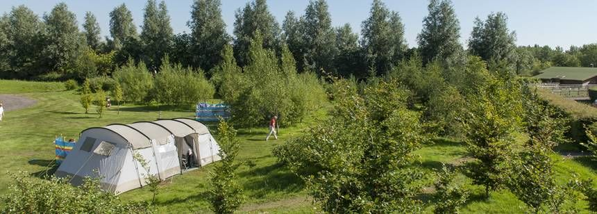 A Pitched Tent in the Tranquil Surroundings of Gullivers Milton Keynes Camp Site, Bucks