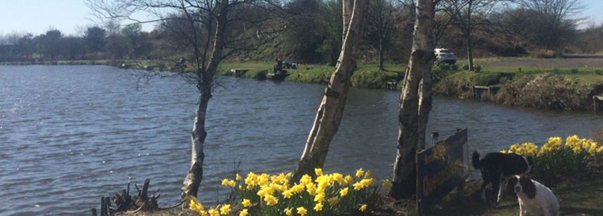 inside the tackle shop