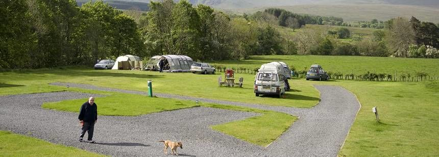 Walking His dog Through the Troutbeck Camp Site, Cumbria