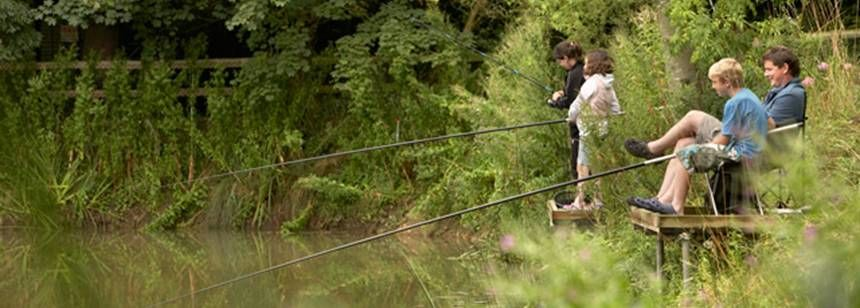 Families Fishing and Enjoying Their Time at the Thetford Forest Campsite, Norfolk