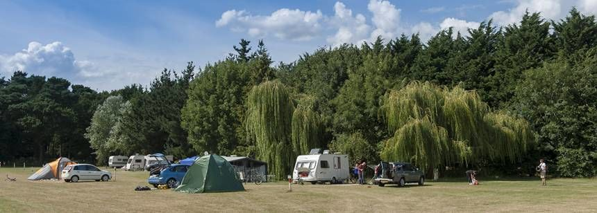 Thetford Forest campsite