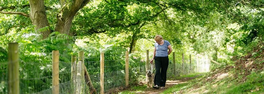 Female camper enjoying walking her dog around Oswestry Campsite in Shropshire.