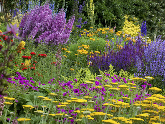 The National Gardens Scheme
