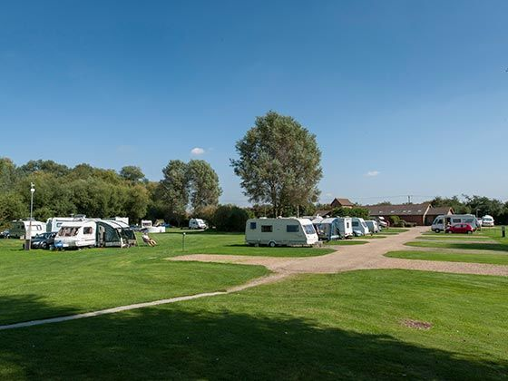 Camping Late Availability
