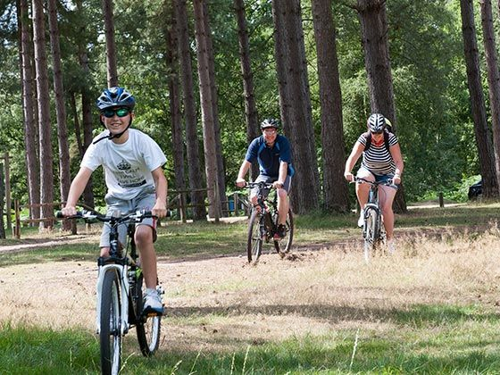 Tours: cycling, walks and trails