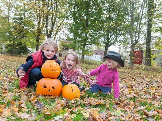 Halloween Camping Events