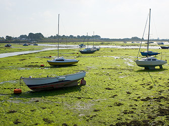 Chichester Club Site Emsworth Harbour walk